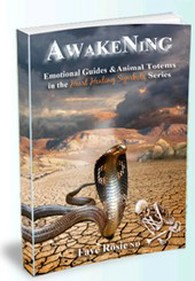 Awakening, Transformational Author, Faye Rosie